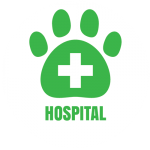 salt-river-vet-icon-hospital-01