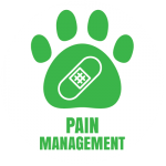 salt-river-vet-icon-pain-management-01