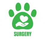 salt-river-vet-icon-surgery-01